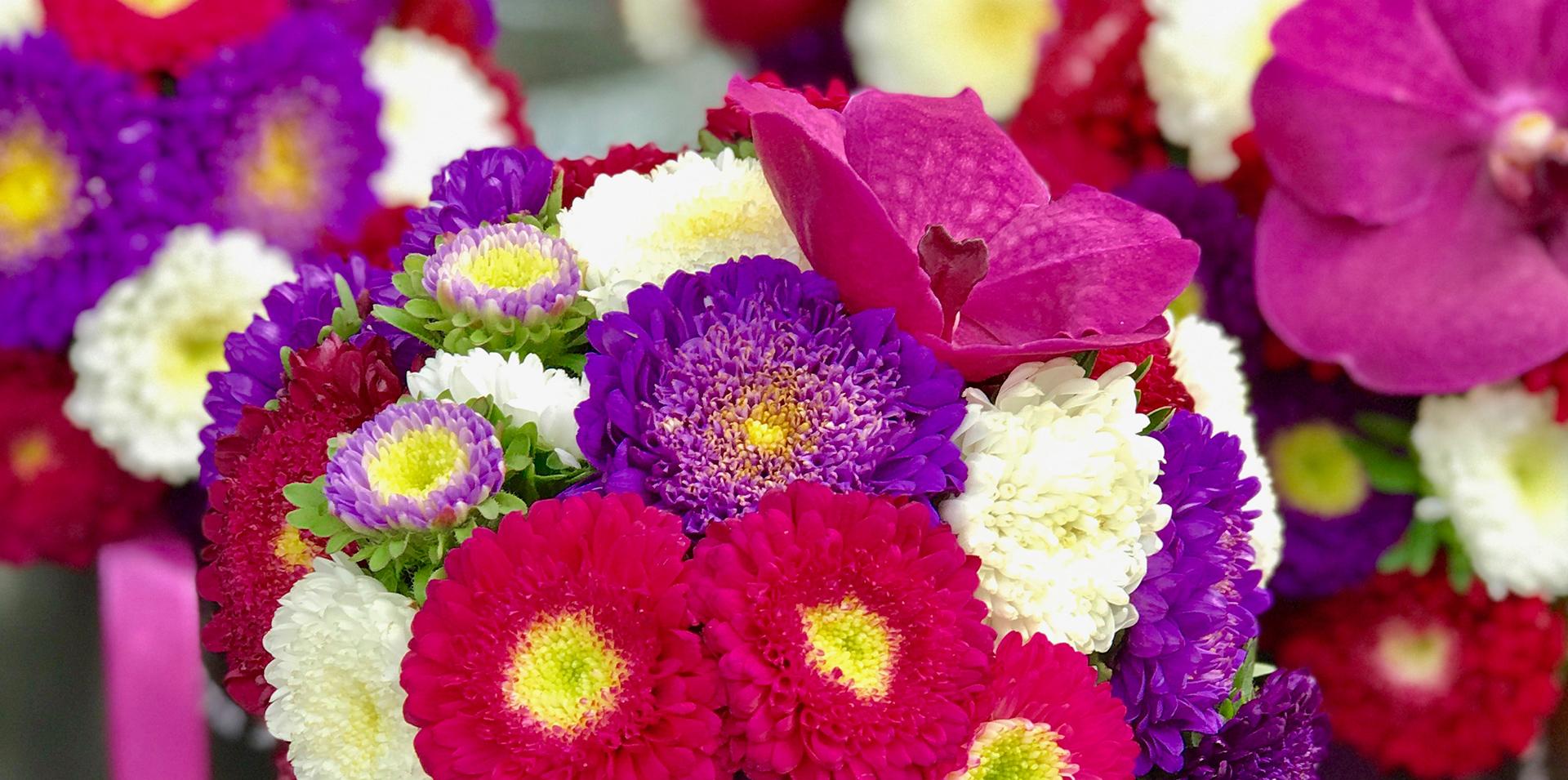 Florale Welten Sliderbild